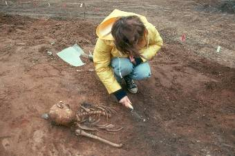 Skeleton excavation